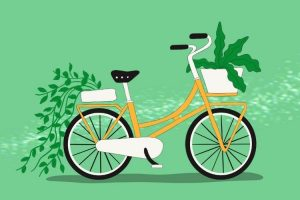 Healthy Activity Cycling